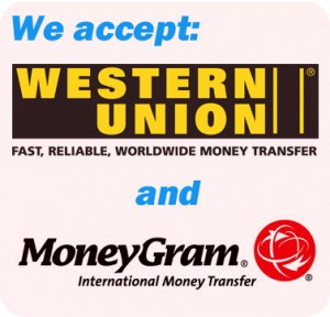 WesternUion & MoneyGram Logo